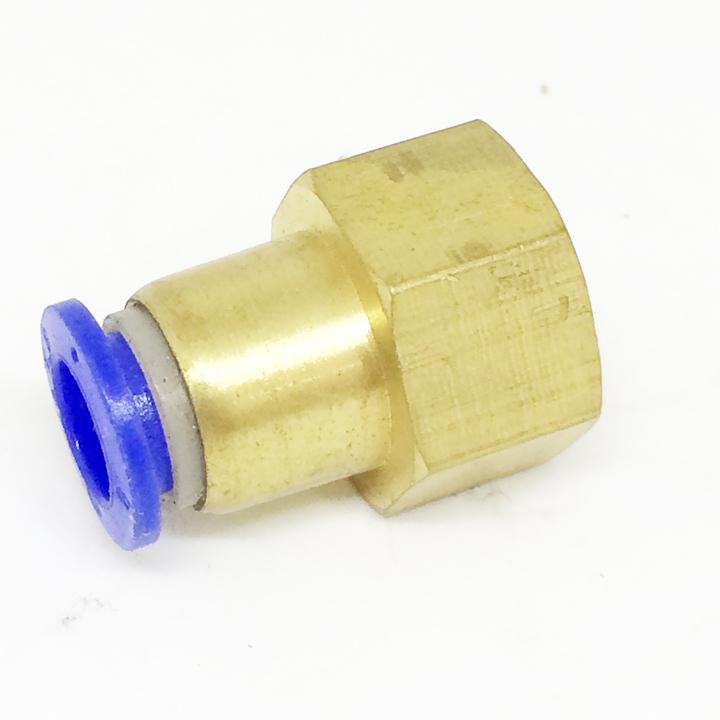Ren trong 17 ống 8mm