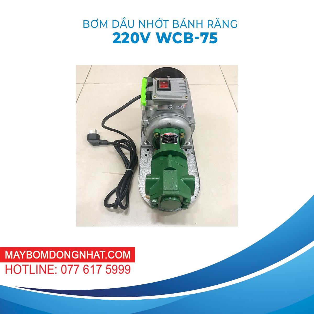 Bơm Dầu Nhớt Bánh Răng 220V 750W 75LP