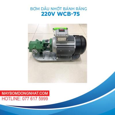 Máy Bơm Dầu Nhớt Bánh Răng 220V 750W 75LP